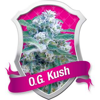 O.G. Kush Feminised Seeds